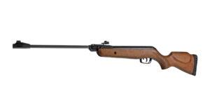 Air Gun Gamo Delta Forest (160 M/s)
