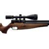 Air Rifle PCP Webley Raider 12 Quantum .177